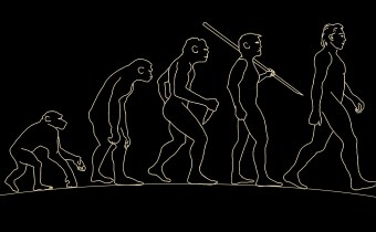 A New Piece in the Puzzle of Human Evolution