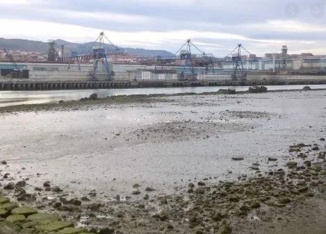 La producción industrial crece un 12,3% en Euskadi, casi nueve puntos por encima de la media nacional,