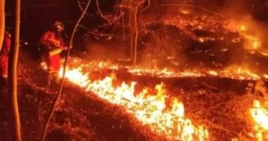 """El Gobierno navarro admite que el incendio que empezó en Bera  y alcanzó Gipuzkoa """"parece"""" haber sido intencionado,"""