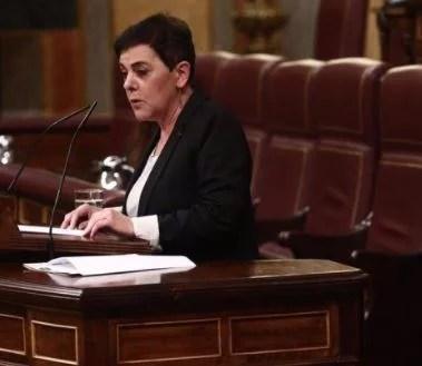 Bildu acusa a Sánchez de usar electoralmente el Covid, exige una alternativa a la alarma y avisa que no apoyará recortes,