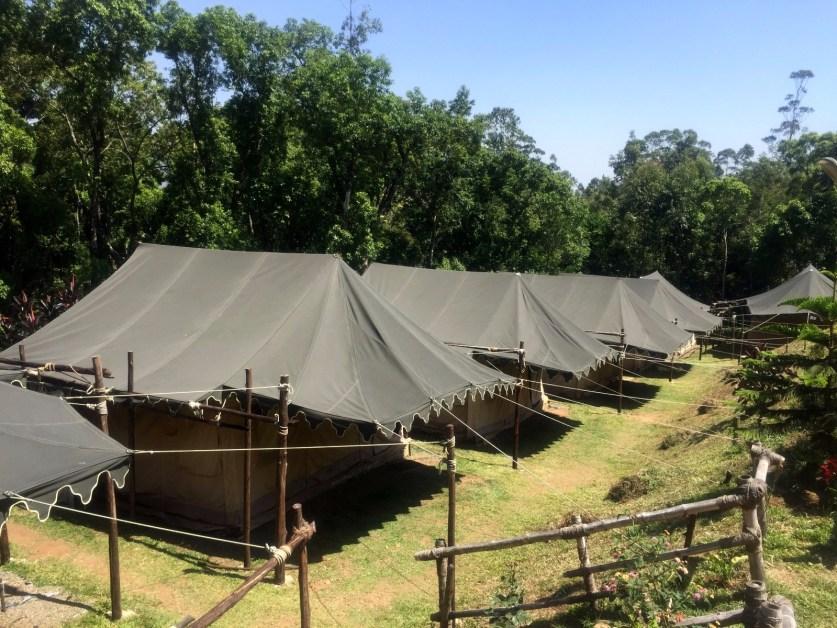 eusouatoa_kerala_india_acampamento_munnar