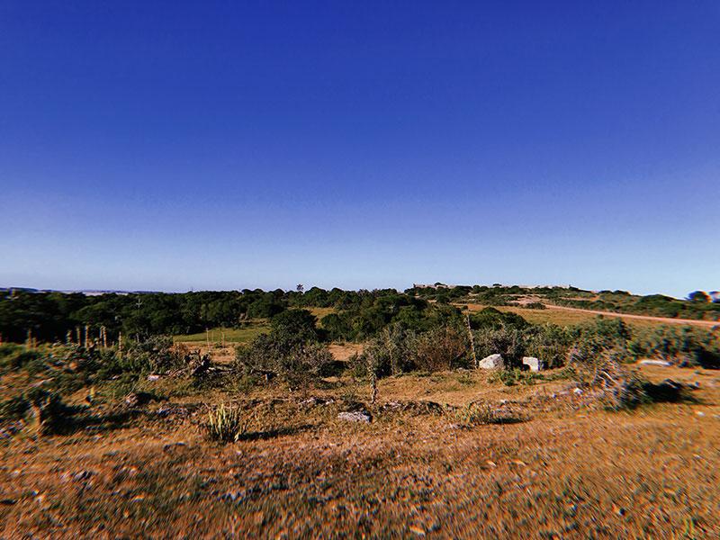 eusouatoa-punta-del-diablo-santa-teresa-uruguai-vista