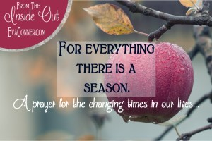 changing-seasons