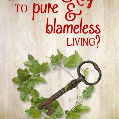 Daily Prayer – Pure and Blameless Living