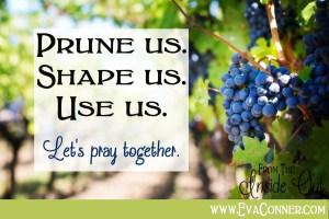 He is the vine and we are the branches.