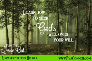 Seek God's will over your will.