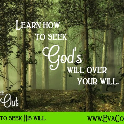 Daily Prayer – Seeking His Will Over Our Will