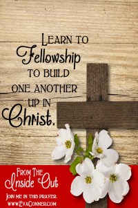 Learn to fellowship to build one another up in Christ.
