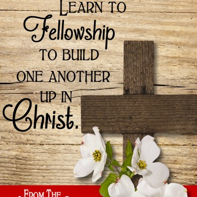 Daily Prayer – It's All About Fellowship