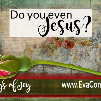 31 Days of Joy ~ Day 31 Do You Even Jesus?