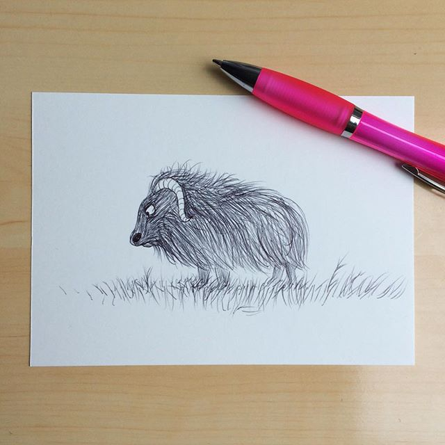 Day 5 / 100. Cue: drawing with a ballpoint. I know ballpoints are perfect for drawing hairy animals - so that's what I did. I don't think this hairy creature agrees with the recent weather change. In fact, it refuses to play until the sun comes out again. #100dayproject #100daysofdrawing #drawingeveryday #drawingwithballpoint #ballpointdrawing #hairyanimal #fuzzyanimals #furryanimals #notamused #refusingtomove