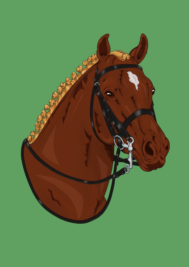 Dressage horse colouring page for teenagers for free