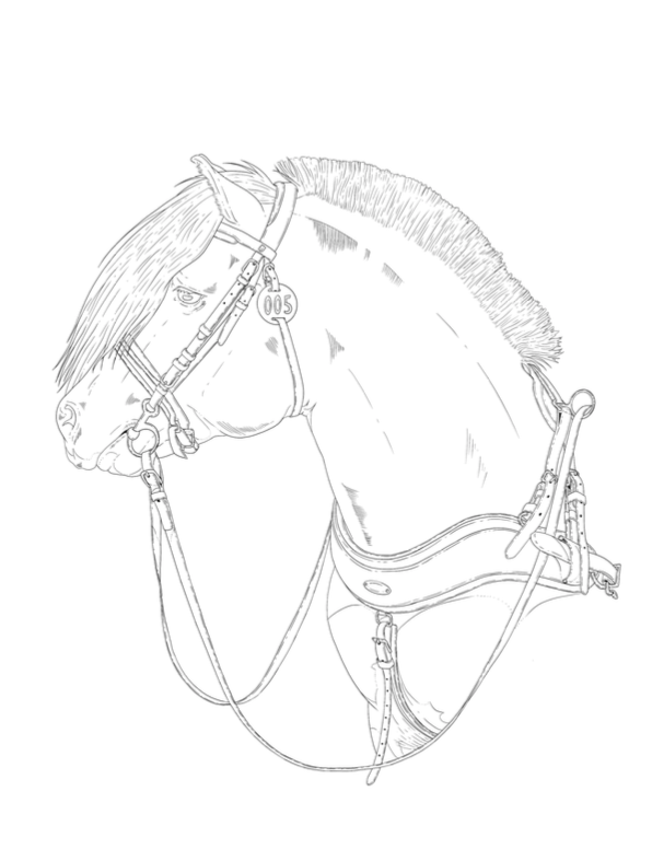 Norwegian Fjord Pony Coloring Page Printable A4