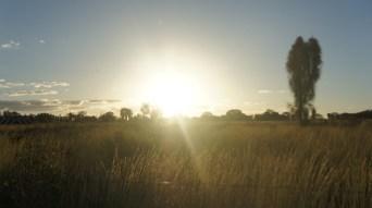 Sun Australia