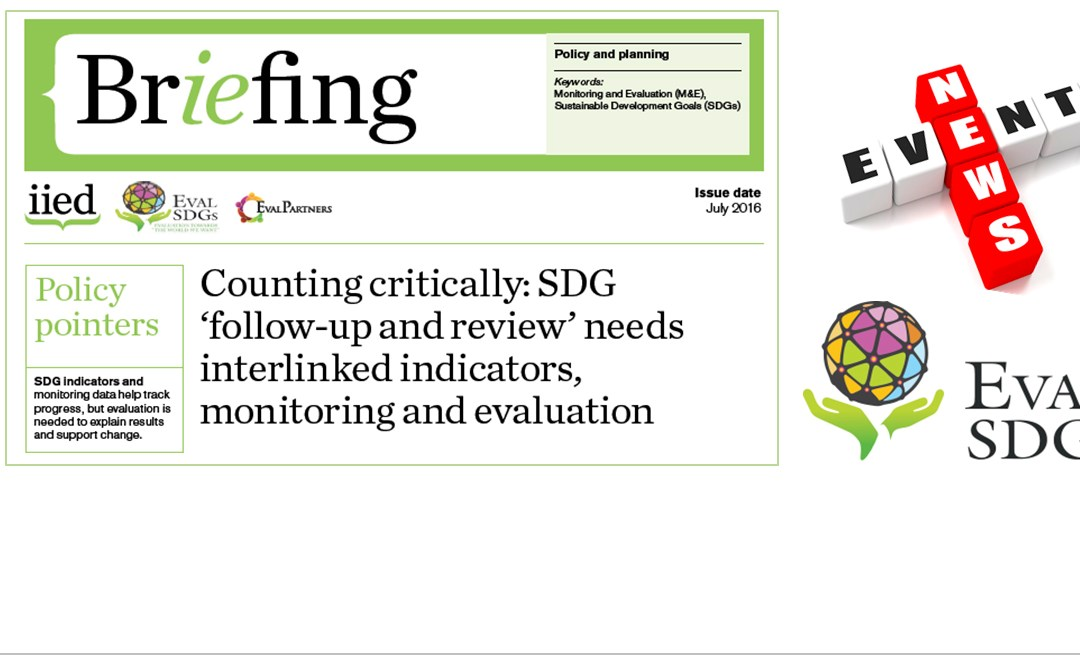 Briefing Paper 2 – Counting critically: SDG 'follow-up and review' needs interlinked indicators, monitoring and evaluation