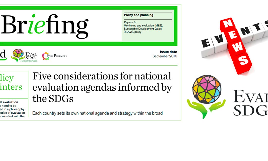 Briefing Paper 3 – Five considerations for national evaluation agendas informed by the SDGs