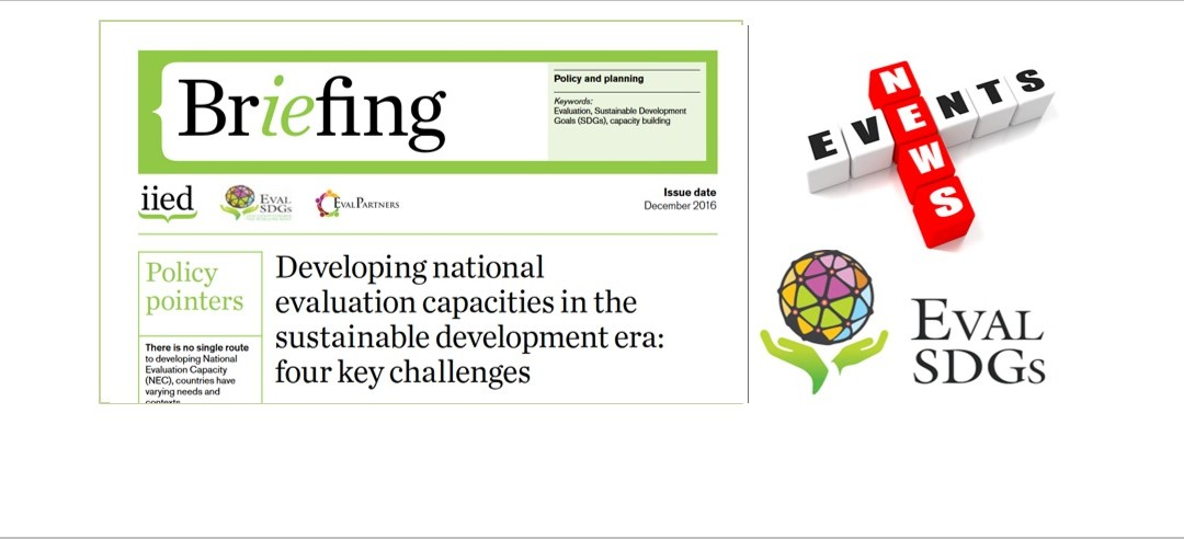 Briefing Paper 5 – Developing national evaluation capacities in the sustainable development era: four key challenges