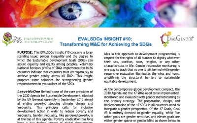 EVALSDGs Insight #10: Transforming M&E for Achieving the SDGs