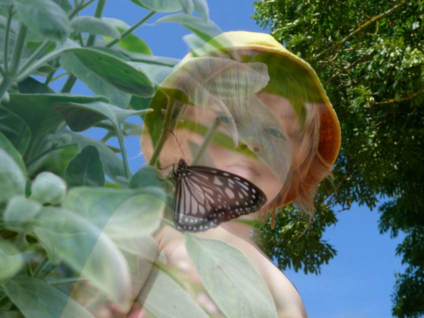 child_and_butterfly_beauty_of_childhood