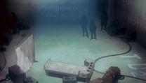 Rei lab Seq 03