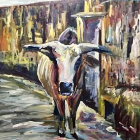 RIshikesh Bull