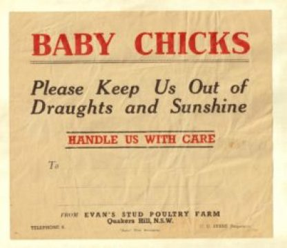 Evans Chicks flyer from 1948