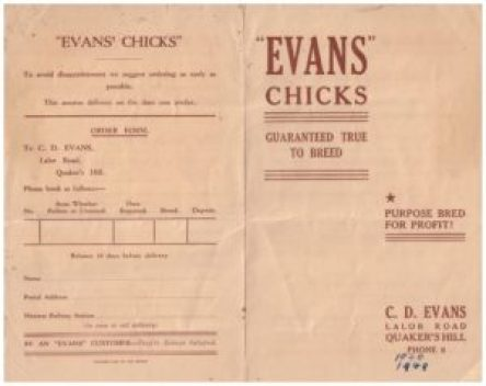 Evans Chicks order form from 1948