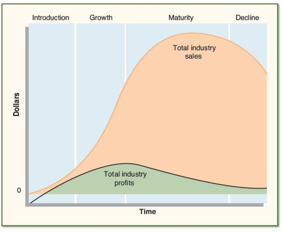 The Impact of an Industry's Life Cycle on a Company