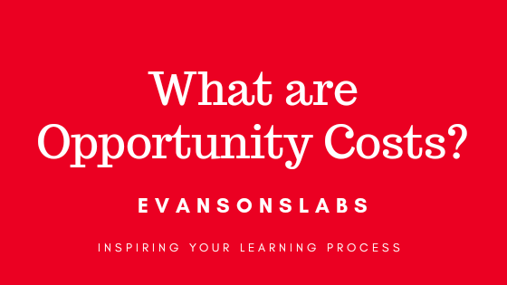 What are opportunity costs?