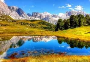 clouds daylight forest grass