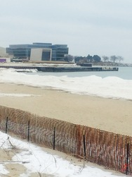 Evanston's Shoreline
