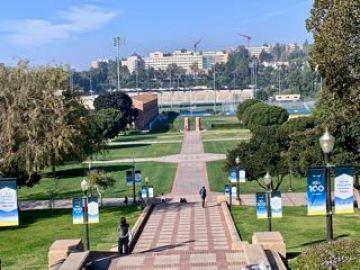 UCLA vista