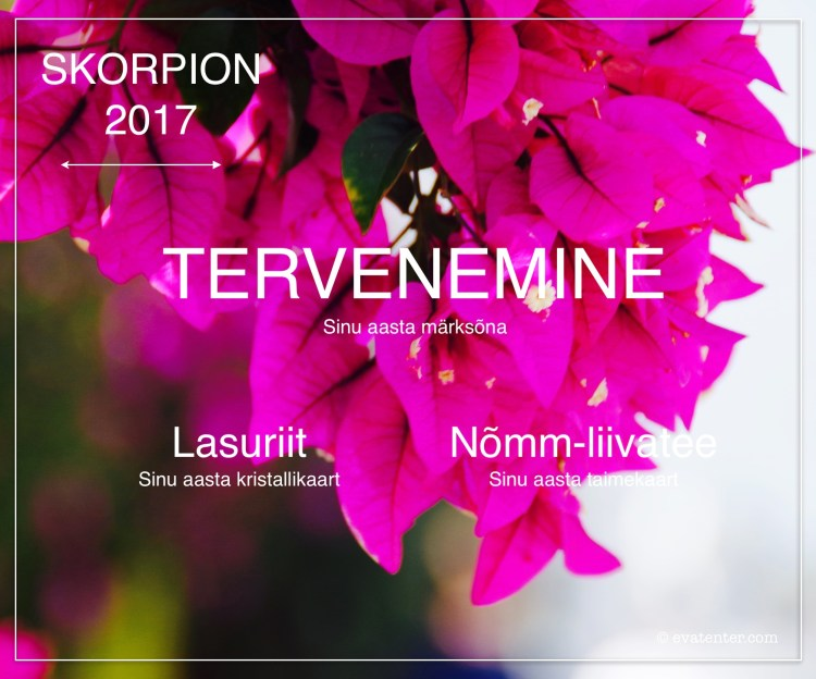 horoskoop skorpion 2017