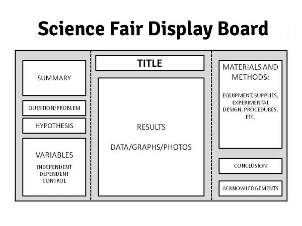 The Ins & Outs of Science Fairs: Preparing Your Display ...