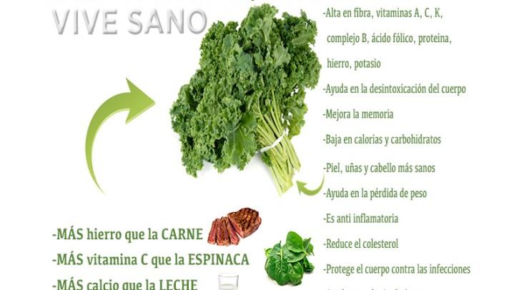 La estrella verde de los nutrientes: la kale | Salud
