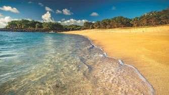havai-molokai-adasi-satiliyor-05-evdenhaberler