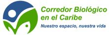 Cursos Online-CBC