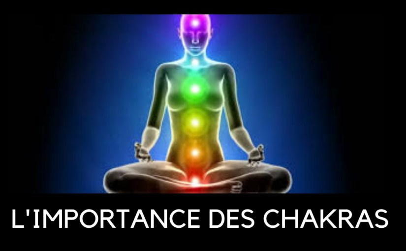 L'importance des chakras