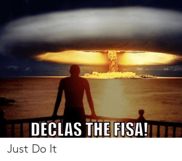 declas-the-fisa-e-just-do-it-45621559