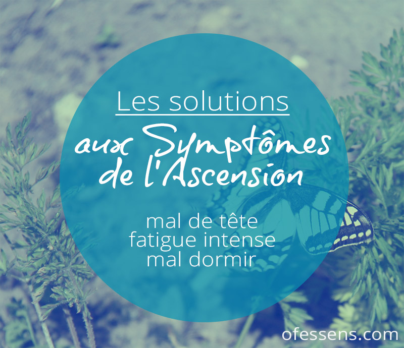 papillon-symptomes-de-lascension-2