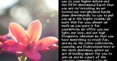 Le Conseil Arcturien : Vous inviter dans la communauté galactique !
