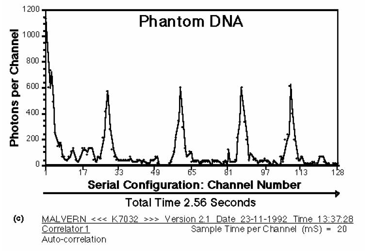 dna-phantom-3