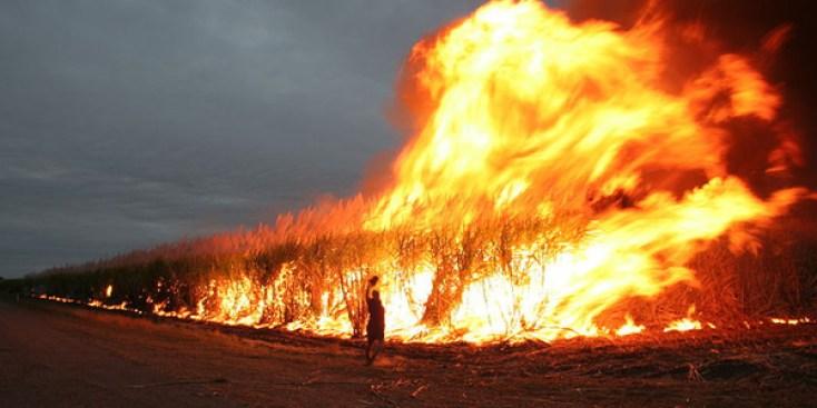 fire-in-australia