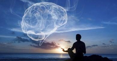 Comment connecter le Cœur et le CERVEAU ? Gregg BRADEN (Français), la machine à relaxer le cerveau