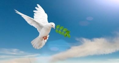 Anne Givaudan parle : nous ne sommes pas en guerre…