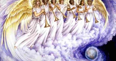 Collectif des Archanges : Résultat choisi
