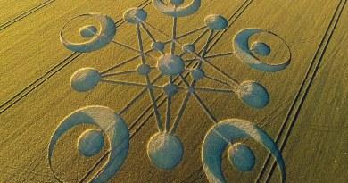 Lulumineuse, Rémy Celdar et Lydie: Les Crop Circles 2020 sont des messages d'Amour Universel !