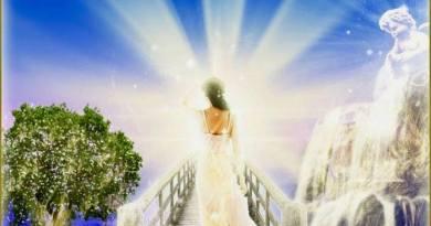 Message de Marie sur l'évolution en cours partie 19 transmis par Philippe-David Stellaire 27.11.20