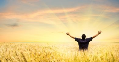 Comment articuler les news de la boite de Pandore avec notre Réveil Spirituel