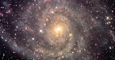 Oeuvres vibratoires de reliance à Arcturius, Vénus, Orion, Alcyone, Uranus, andromède, Lémurie, Pléiades, Sirius, Dragons, Source